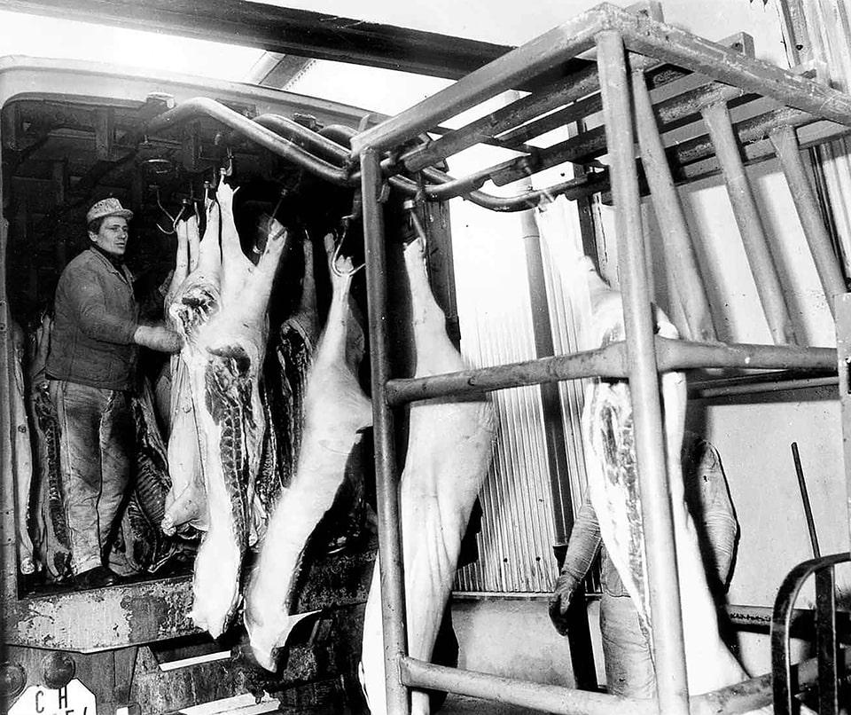 Lebensmittel werden in die Kühlräume eingelagert // Aus dem Archiv von Frigolanda Dresdner Kühlhaus GmbH